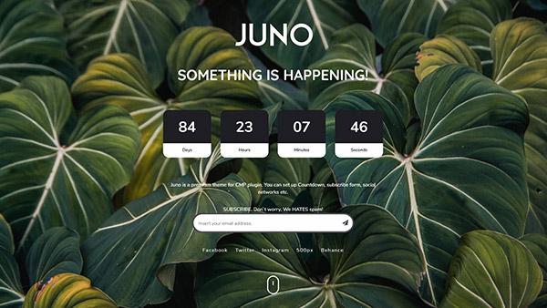 CMP Juno